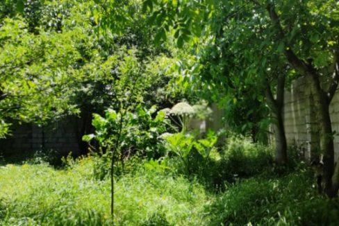 ویلا باغ قدیمی نمارستاق